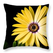Montgomery County Flower Throw Pillow