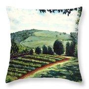 Monticello Vegetable Garden Throw Pillow