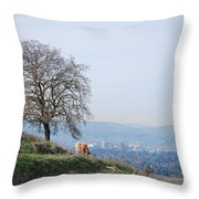 Moo Cow Grazing Throw Pillow