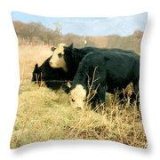 Moo Cow Munch Throw Pillow