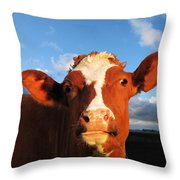 Moo Don't Say Cow Throw Pillow