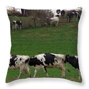 Moo Train Throw Pillow