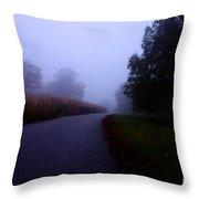 Moody Autumn Pathway Throw Pillow