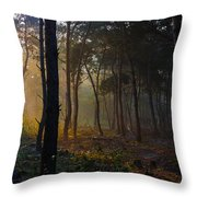 Moody Forest Happy Sun Throw Pillow