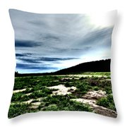 Moody Mother  Throw Pillow