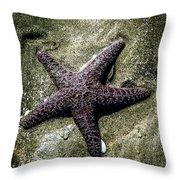 Moody Starfish I Throw Pillow