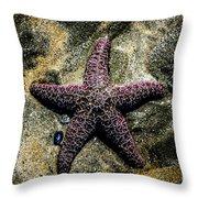 Moody Starfish IIi Throw Pillow