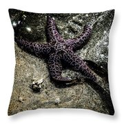 Moody Starfish Iv Throw Pillow