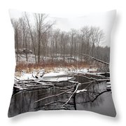 Winter's Moods Throw Pillow