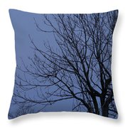 Moon And Bare Tree Throw Pillow