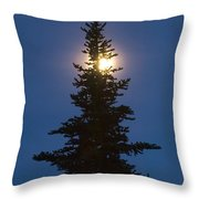 Moon Behind Spruce Throw Pillow