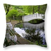 Moon Bridge Throw Pillow