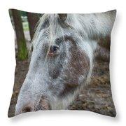 Moon Eyed Horse Throw Pillow