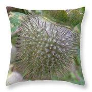 Moon Flower Seed Pod Throw Pillow