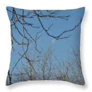 Moon On Treetop Throw Pillow