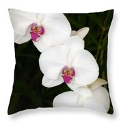 Moon Orchid With Purple Center Throw Pillow