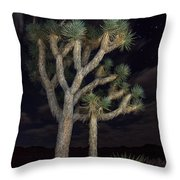 Moon Over Joshua - Joshua Tree National Park In California Throw Pillow