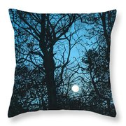 Moon Over Pittsburgh Throw Pillow