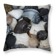 Moon Snails And Shells Still Life Throw Pillow