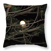 Moon Through Pines Throw Pillow