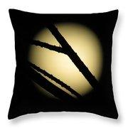 Moon Through The Branches Throw Pillow