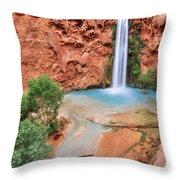 Mooney Falls Throw Pillow