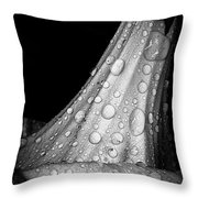 Moonflower And Rainwater  Throw Pillow
