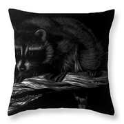 Moonlight Bandit Throw Pillow