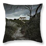Moonlight Farm Throw Pillow