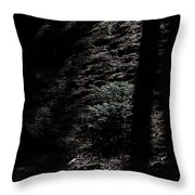 Moonlight On The Hillside Throw Pillow