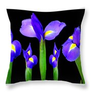 Moonlight Purple Flower Selection Romantic Lovely Valentine's Day Print Throw Pillow