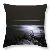 Moonlight Reflection Throw Pillow