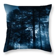 Moonlit Night Throw Pillow