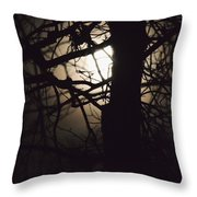 Moonlit Tree In The Forest Throw Pillow