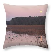 Moonrise Over Waterfowl Pond Throw Pillow
