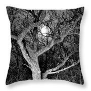 Moonshine 2 Throw Pillow