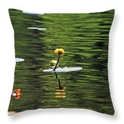 Moore State Park Lily Pond 2 Throw Pillow