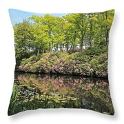 Moore State Park Water Reflections Throw Pillow