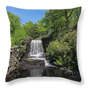 Moore State Park Waterfall 3 Throw Pillow