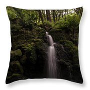 Moorland Fall Throw Pillow