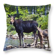 Moose And Baby 4 Throw Pillow