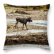 Moose Crossing River No. 1 - Grand Tetons Throw Pillow