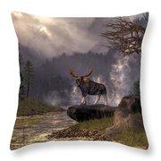 Moose In The Adirondacks Throw Pillow