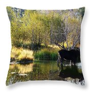 Moose Reflection Throw Pillow