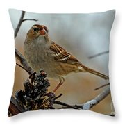 More Peanut Butter Please Card Size Throw Pillow