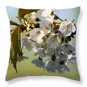 More Spring Flowers Throw Pillow