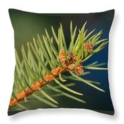 More Spruce Buds Throw Pillow