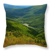 Moormans River Overlook In Spring Throw Pillow