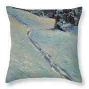 Morning After Snow Throw Pillow