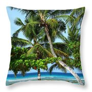 Morning Beauty Throw Pillow